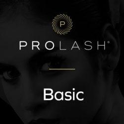 1_Basic